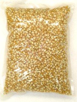画像1: マッシュルームタイプ・ポップコーン豆2kg
